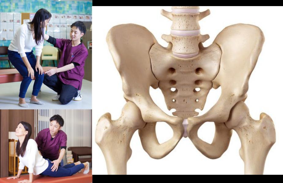 骨盤施術ブランディング